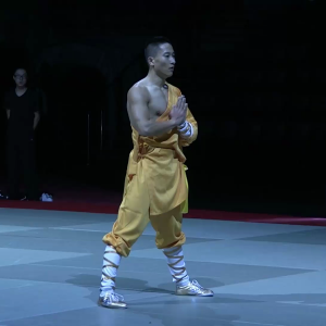 Chang-Hongliang-GNAM-2016-16